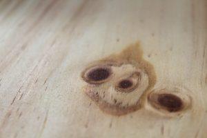 Radita Pine Flooring