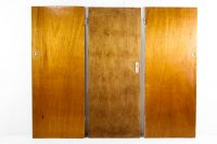 Flush Panel Doors